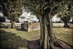 Tyne Cot Cemetery, remaining bunkers.