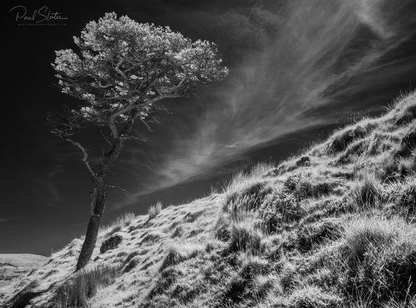 Black and White Infrared Dartmoor landscape