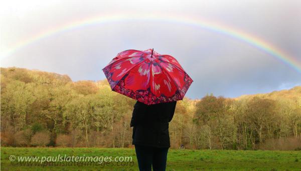 Rainbow over Plymbridge Woods, Plymouth
