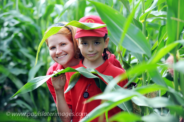 A child from Chernobyl is escorted through a Maize Maze in Cornwall as part of an annual visit .