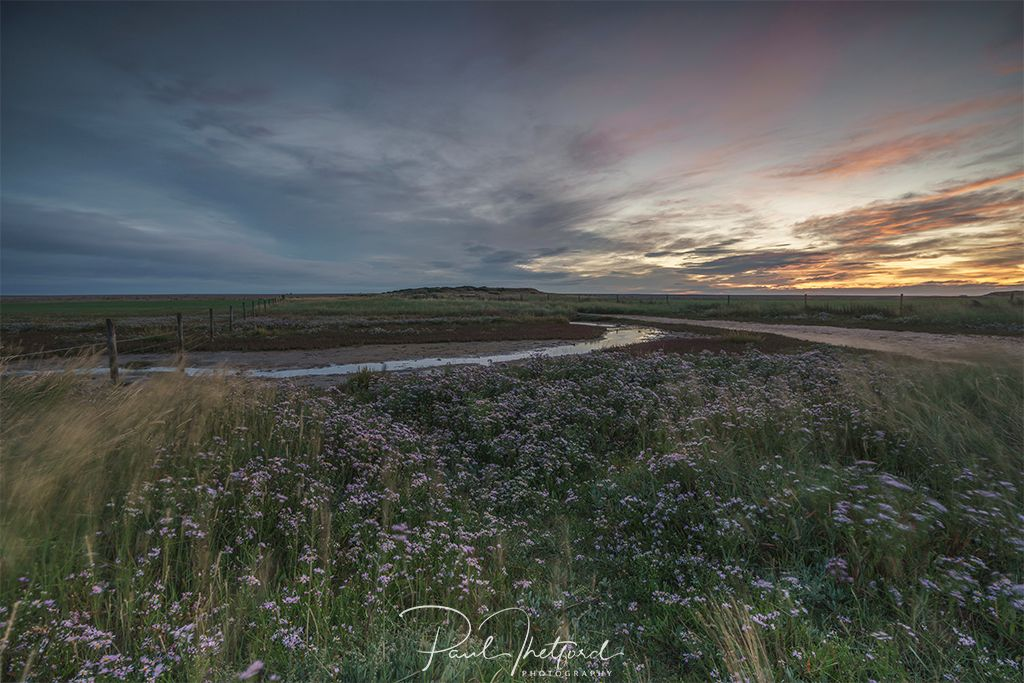 Salthouse Marsh, First light 3