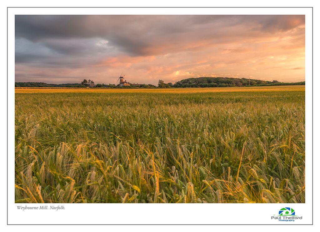 Weybourne Mill, Across the Fields