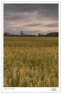 Weybourne Mill, Across the Fields 2