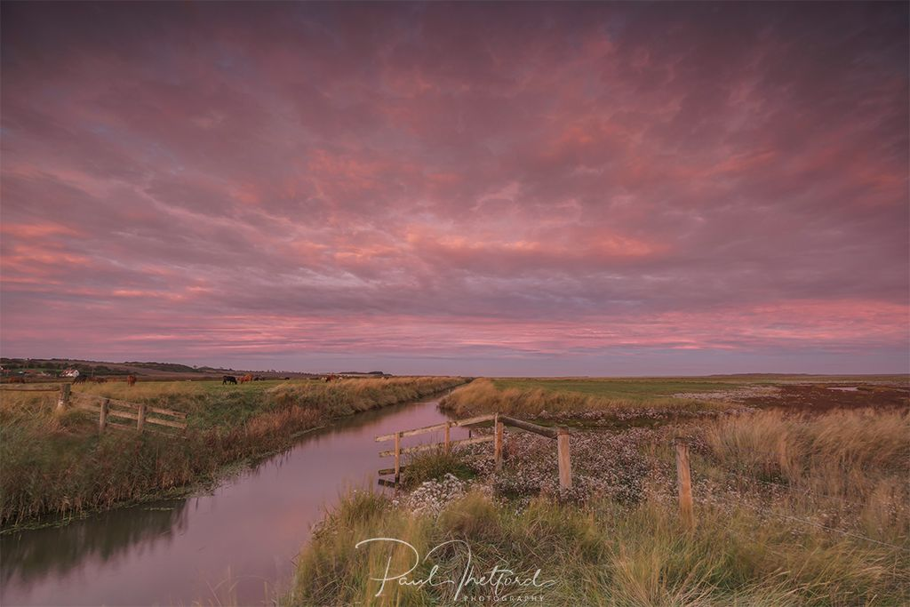 Dawn Salthouse 3