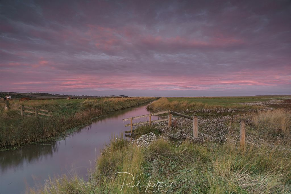 Dawn Salthouse 4