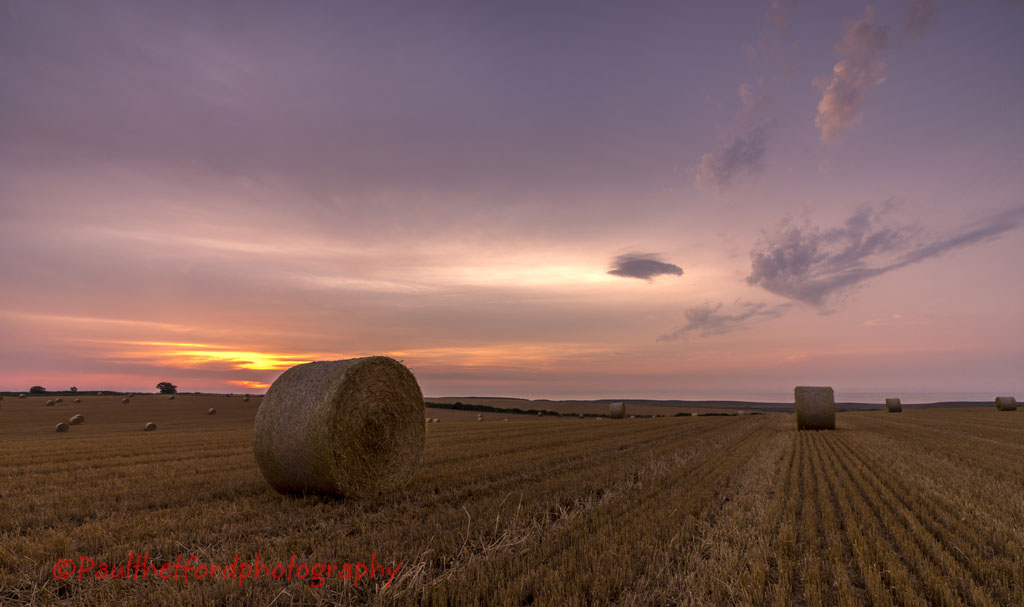 Norfolk Harvest 2014