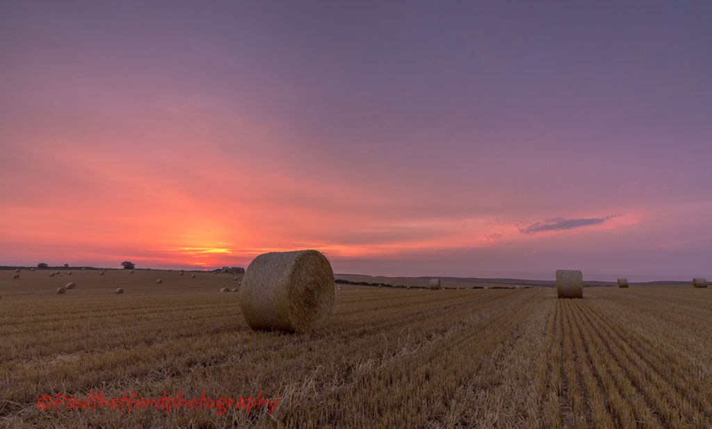 Norfolk Harvest 2014 (2)