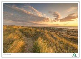 Winterton Dawn Light 5