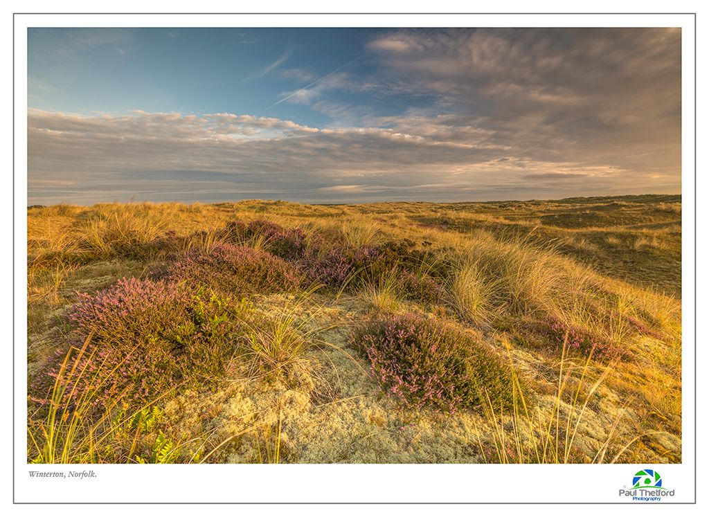 Winterton Dawn Light