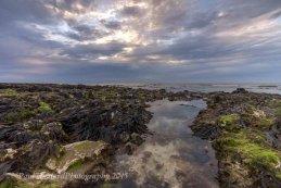 Rock pools West Runton Beach 3