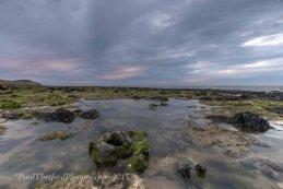 Rock pools West Runton Beach 5