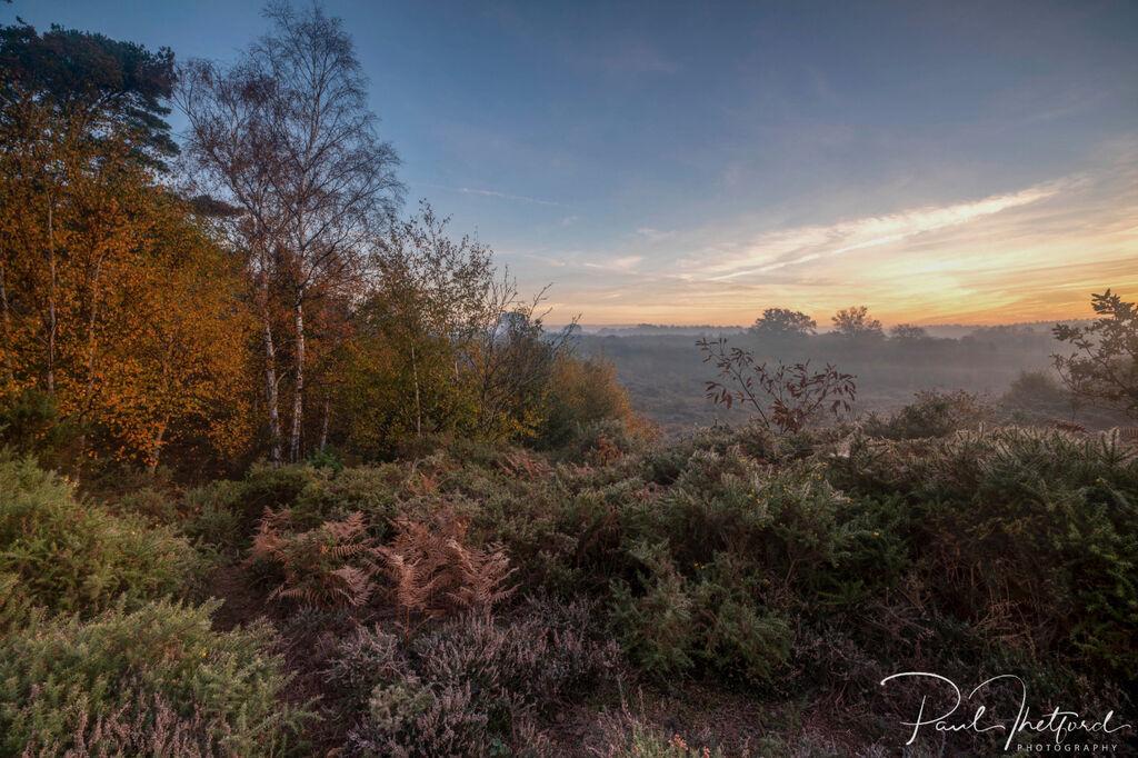 Norfolk Autumn colours 6