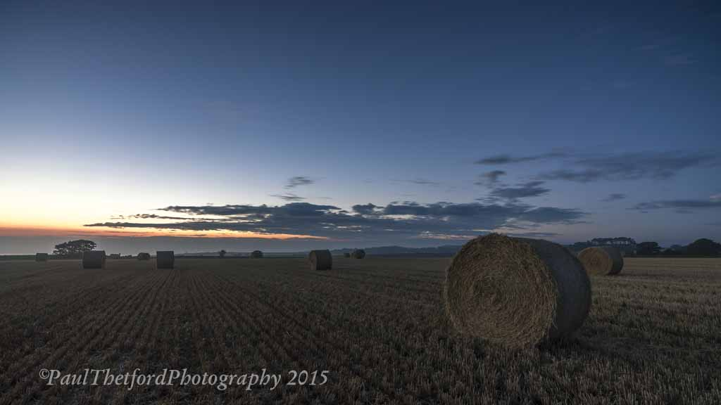 Last days of  Harvest. Dawn