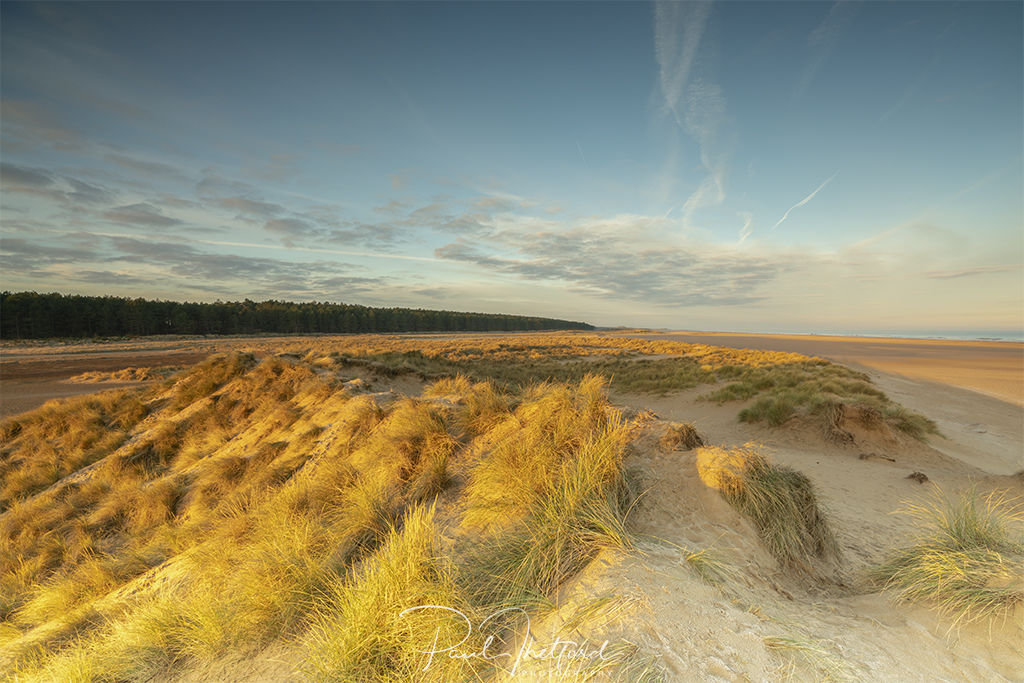 Norfolk coast Dunes 3