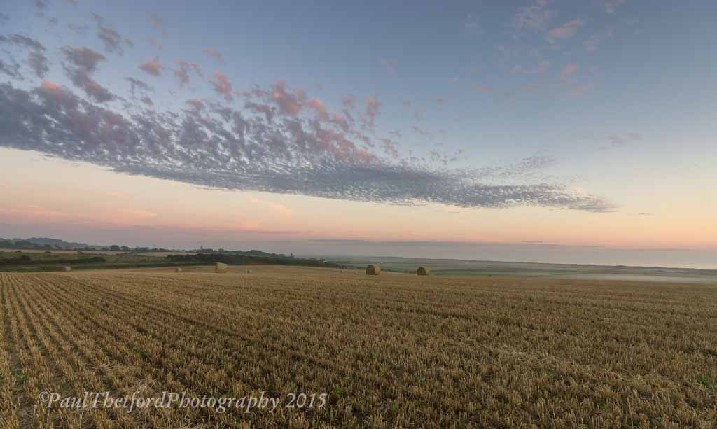Last days of  Harvest. Dawn 3