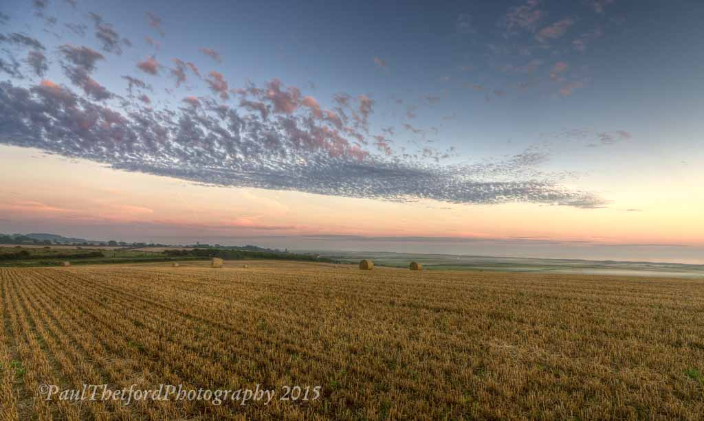 Last days of  Harvest. Dawn 2
