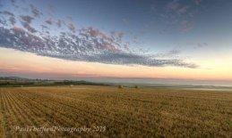 Last days of  Harvest. Dawn 2