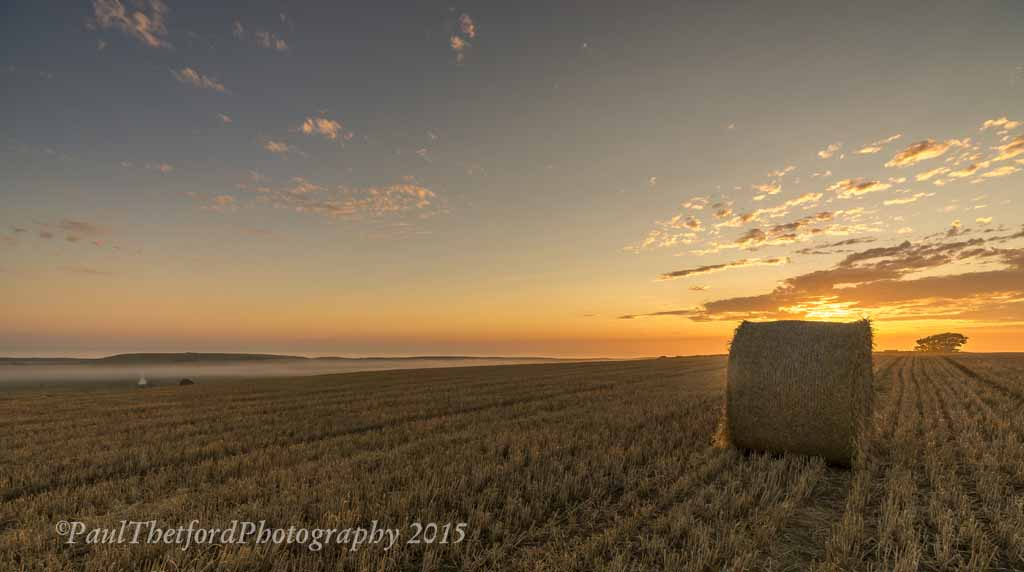 Last days of  Harvest. Dawn 4