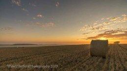 Last days of  Harvest. Dawn 4