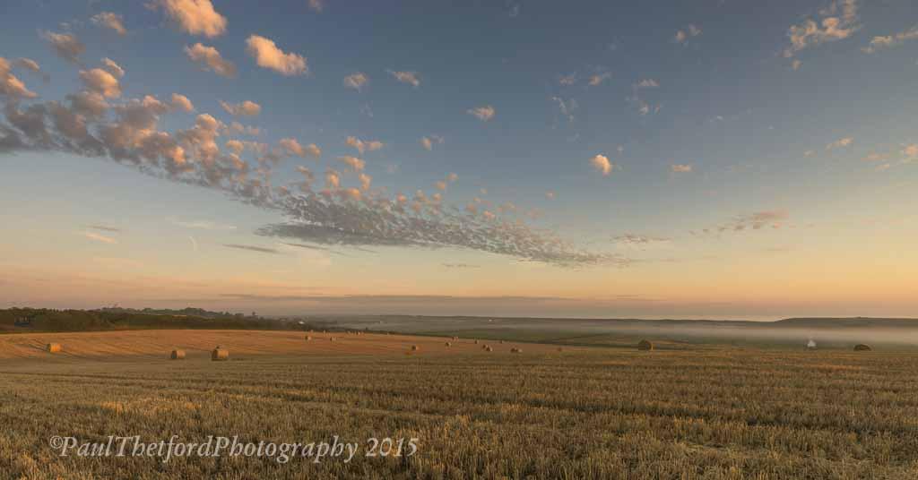 Last days of  Harvest. Dawn 5
