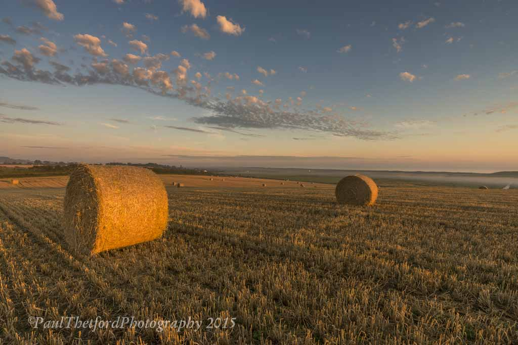 Last days of  Harvest. Dawn 6