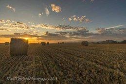 Last days of  Harvest. Dawn 7