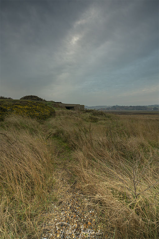 Salthouse Marsh 5