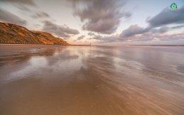 Trimingham Dawn 5