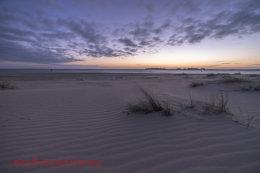 Dawn Wells Beach