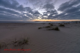 Dawn Wells Beach 2