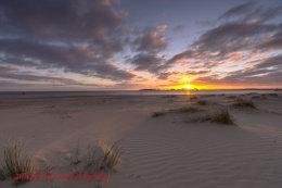 Dawn Wells Beach 3