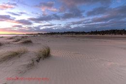 Dawn Wells Beach 4