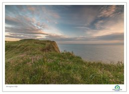 Dawn Sheringham, Cliff Top 4