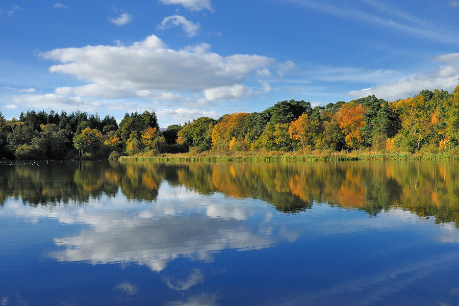 Stover Reflections