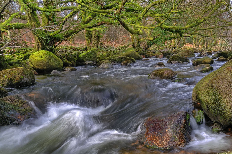 Enchanted River!