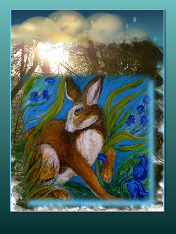 Hare Belles 2. Gallery: TheSpringCollection £14.99 each £5. P&P