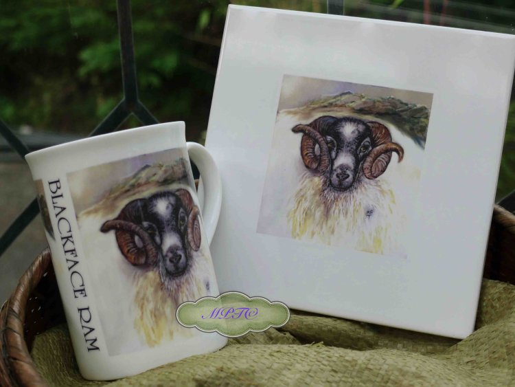 """Blackface Ram"" Special Price. Printed Mug @ £7.99 & Tile £7.99 Each. £5 P&P"