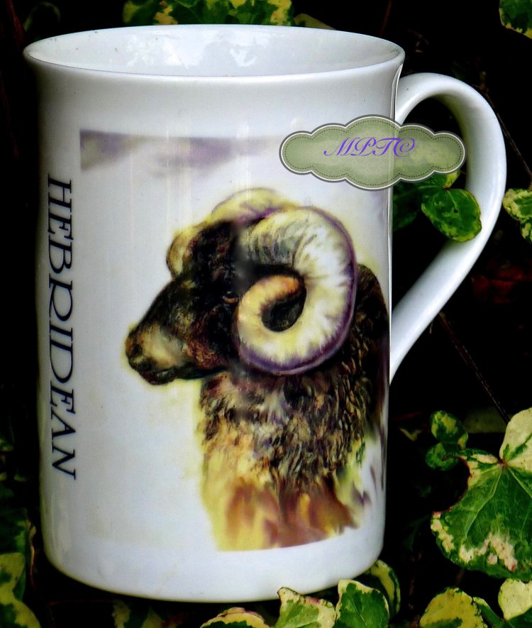 """Hebridean"" Printed Mug. Gallery: LimitedEditionPrintedMugsandTiles £7.99 + £5 P&P"