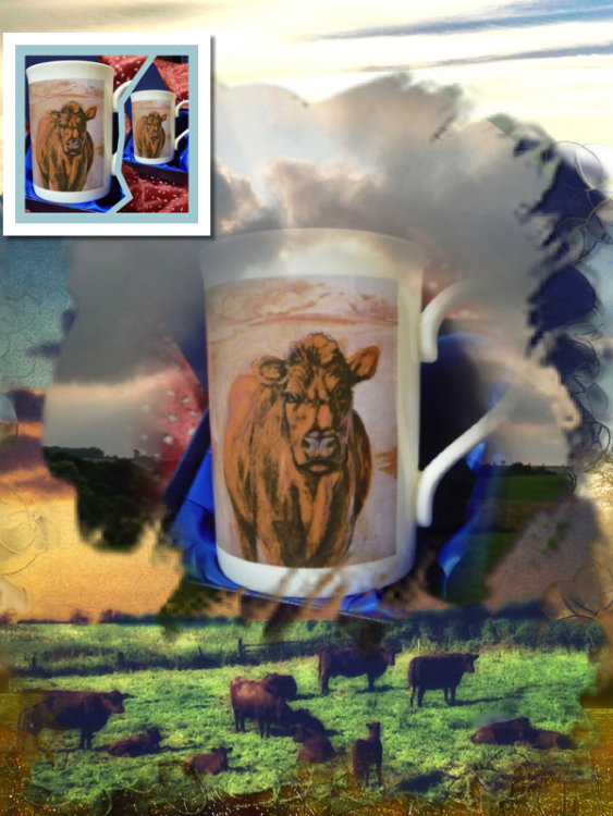 Limited Edition Printed 'Lincoln Red' Mug. Gift Boxed £20.