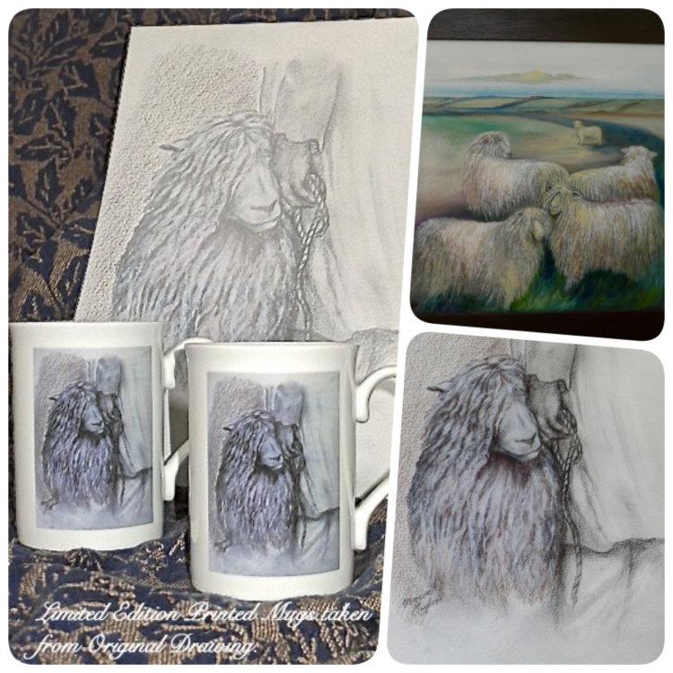 Drawing and Painting Rare Breed Sheep