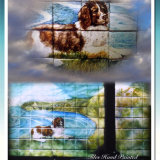 Past Commission of Hand Painted Tile Mural