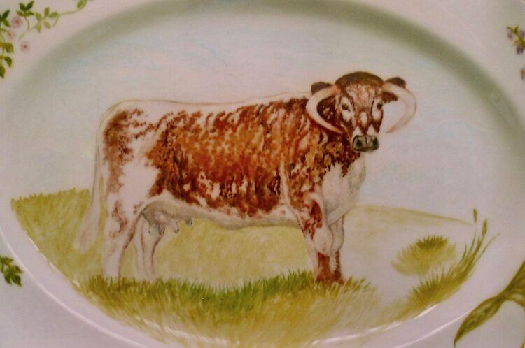 """Longhorn Plate"" Unique Hand Painted Plate."