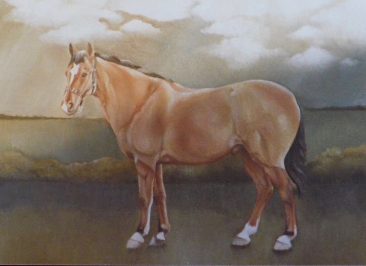 Horse Oil on Canvas
