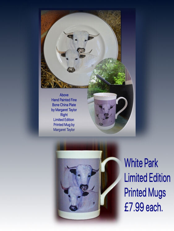 Top. Hand Painted White Park Cattle Plate. Right. Limited Edition Printed Mug. £7.99 each.