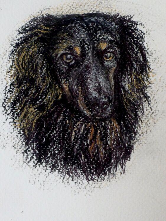 Slow Draw £25.00. A Portrait Drawing