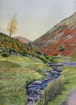 Carding Mill Valley Stream