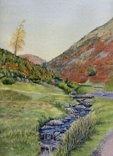 Carding Mill Valley Stream