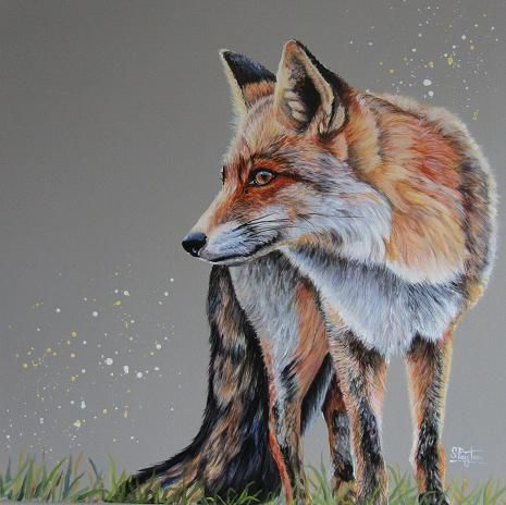 Red Fox - SOLD