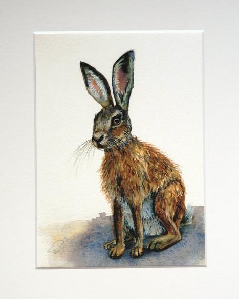 Hare #1
