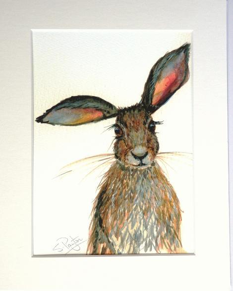 Hare #2